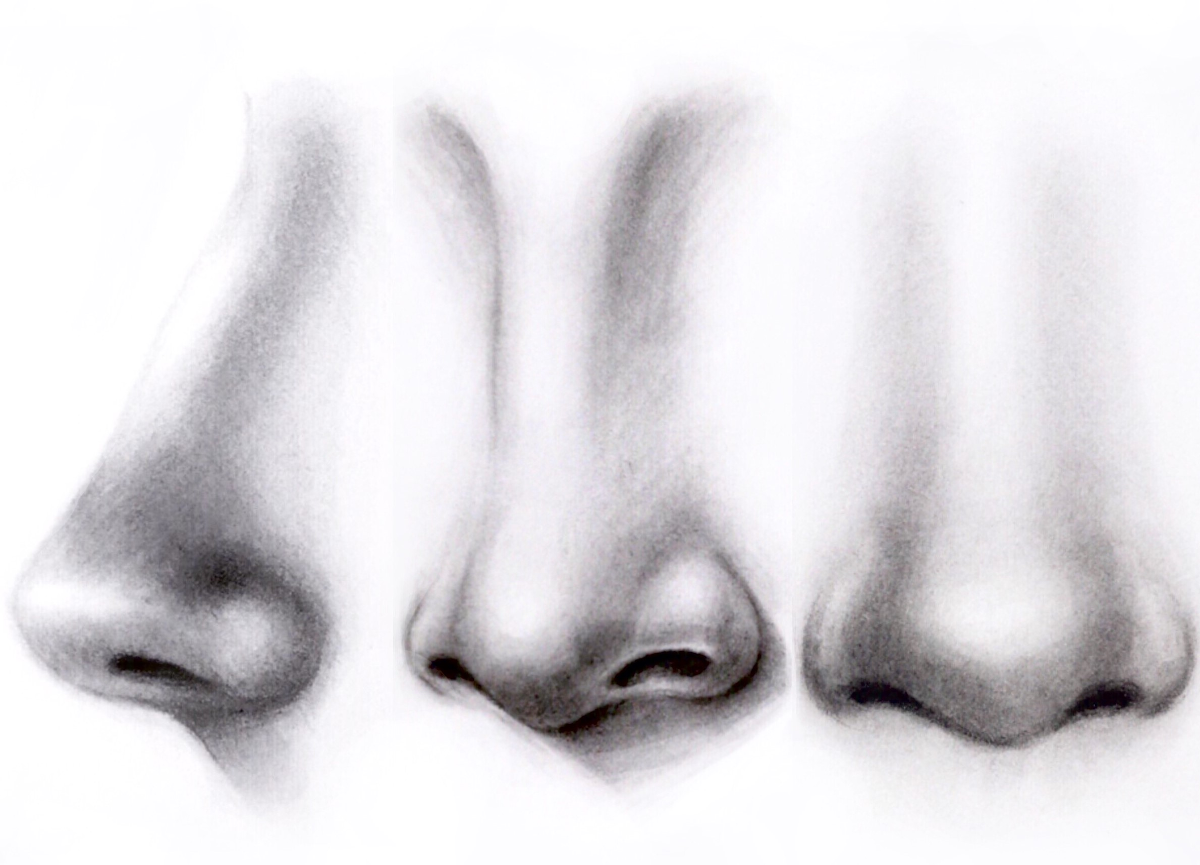 03 Mar How To Draw A Nose '�  Step By Step