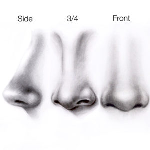 Easy Tutorial - How to Draw a Nose? - Silvie Mahdal - The ...